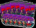Thumbnail PLR For Newbies Video Series-Learn About PLR