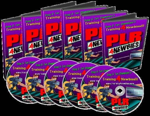 Product picture PLR For Newbies Video Series-Learn About PLR
